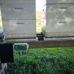 Nujna oprema za vsakega čebelarja