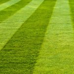 Urejena zelenica je rezultat dela akumulatorske kosilnice